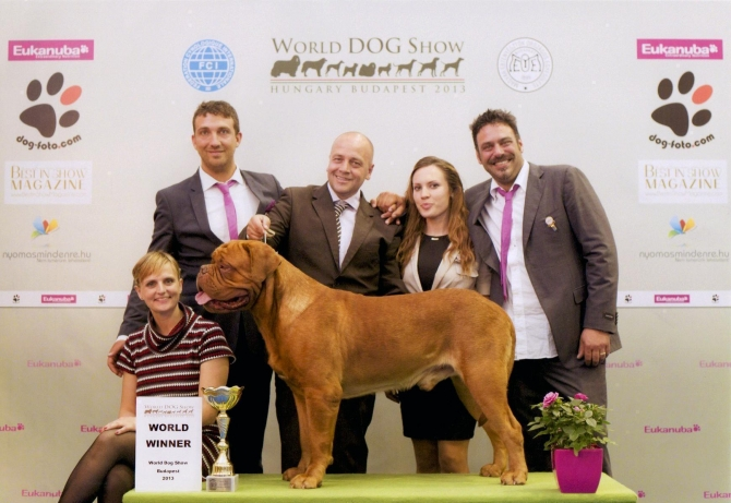 ...:::: WORLD WINNER 2013 ::::... - IRONMASTIFF-KENNEL